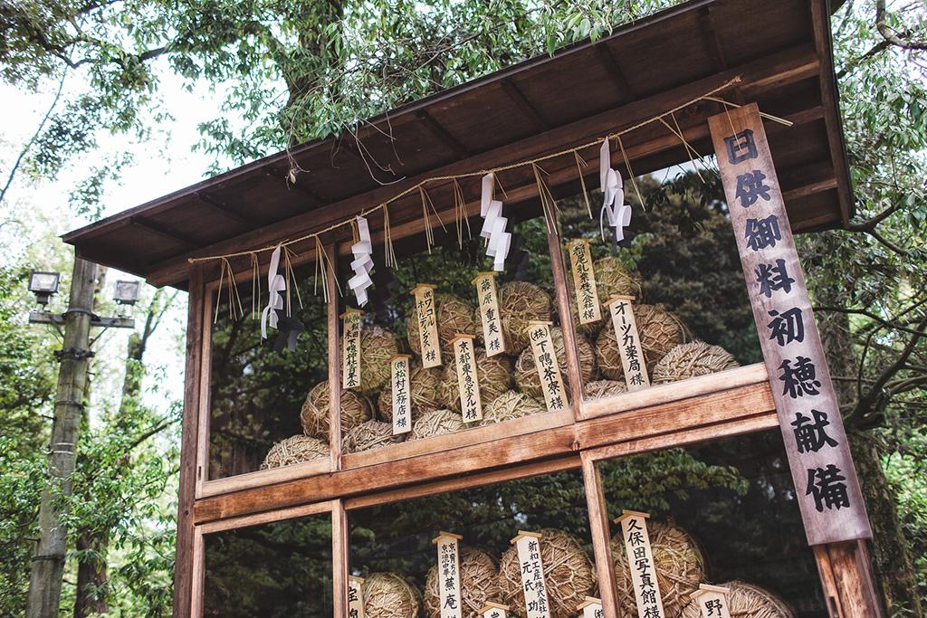日本京都|鴨川|海外婚紗|櫻花季|下鴨神社