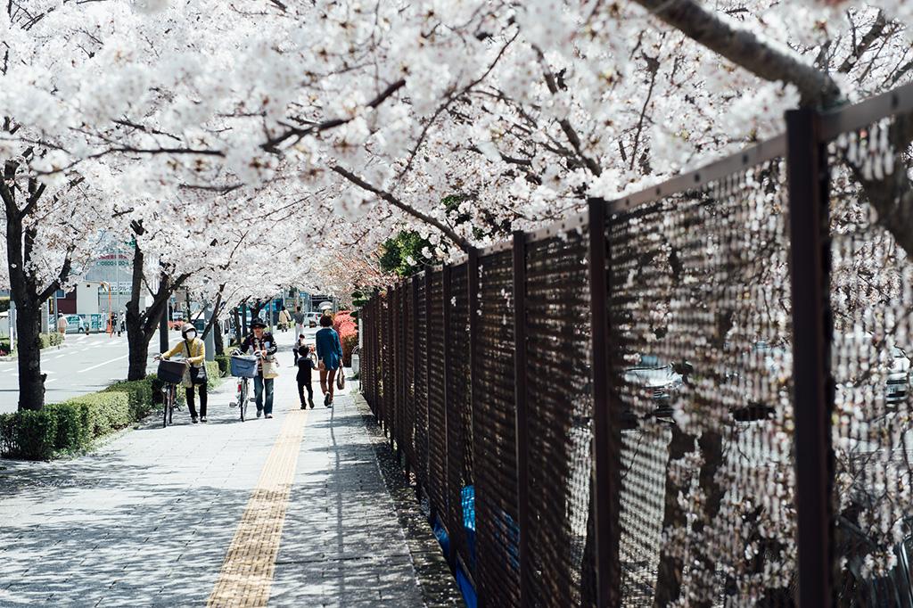【京都拍婚紗】景點 – 攝津富田小鎮
