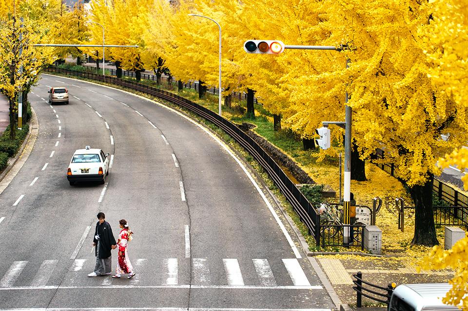 《海外婚紗》嘉文 & 璨華 / 京都 Kyoto