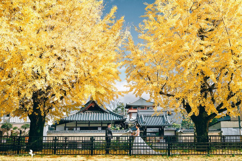 《海外婚紗》岳恩 & 采希 / 京都 Kyoto